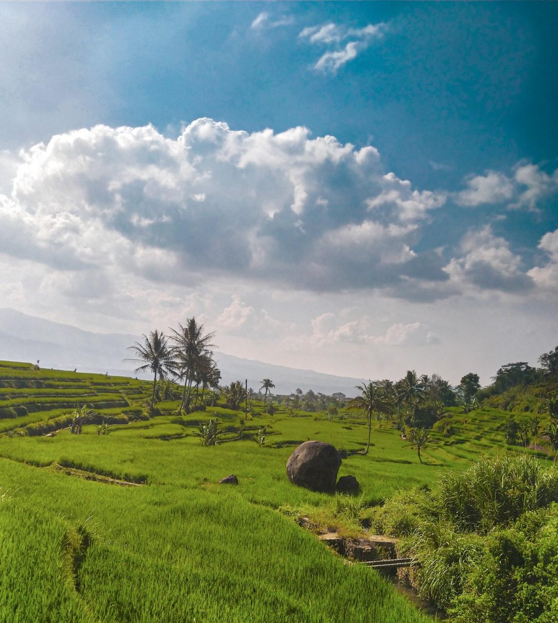 Van 6 maanden reizen door Azië naar het verliezen van mijn baan