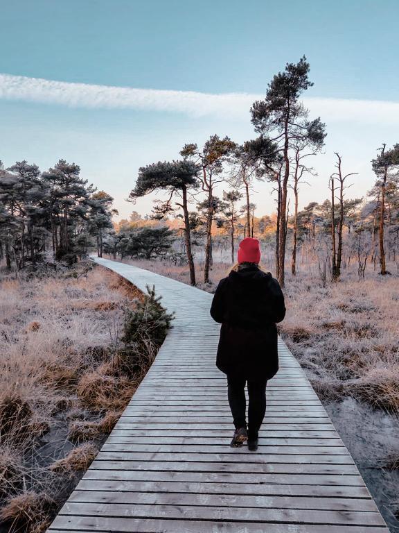 De mooiste vlonderpaden in Nederland